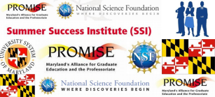 SSI Banner 2014 NO DATE