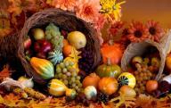 thanksgiving_cornucopia_fall_harvest_friuts_hd-wallpaper-854733