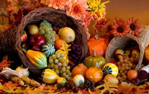 thanksgiving_cornucopia_fall_harvest_friuts_hd-wallpaper-854733