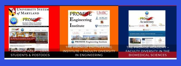 PROMISE full banner of three programs with blue frame